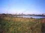 Coatham Marsh