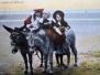 Sea Front - Donkeys Horses etc
