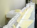 3087 Promenade Exhibition 2011