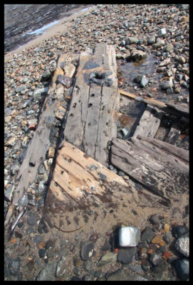 4002 Exposed timbers below sandsFB.jpg