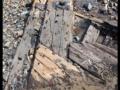 4002 Exposed timbers below sandsFB.jpg